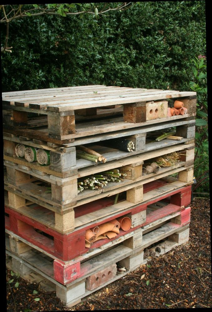 Build a bug house out of old pallets for What can you make out of wooden pallets